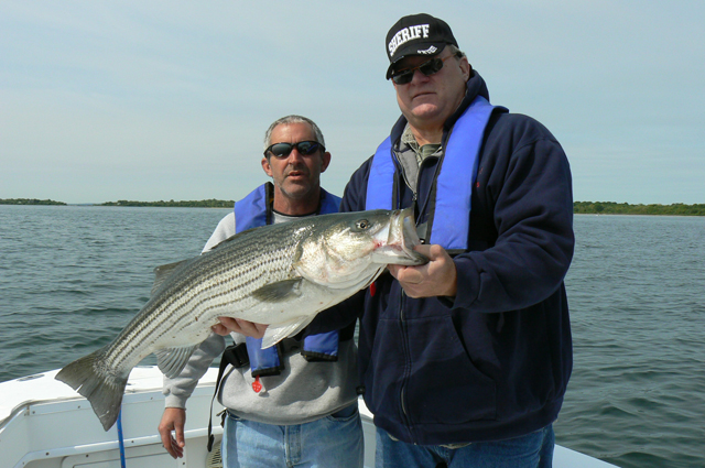 Striped Bass Fishing RI
