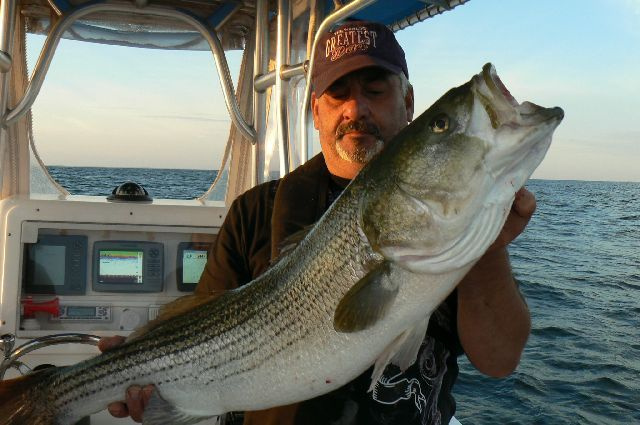 Joe from Providence, RI with Block Island Bass