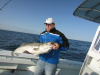 Block Island Striper Fishing